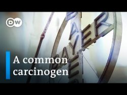 Turning toxic – The Bayer-Monsanto merger | DW Documentary