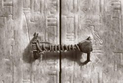 The 3,245 year old seal on Tutankhamun's tomb photographed in 1922.