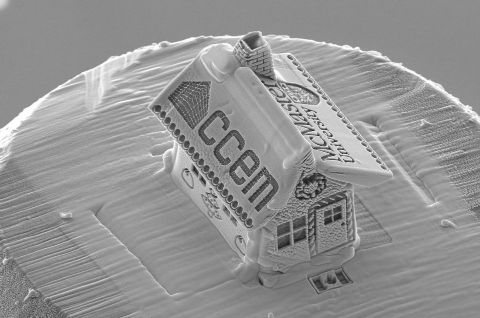 Microscopic gingerbread house, 1/10th the width of a human hair, made by using a gallium-ion bla ...