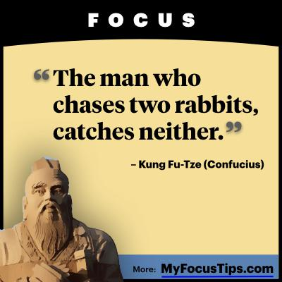 The man who chases two rabbits, catches neither