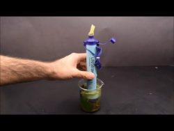 Life straw filtered dirty water under the microscope