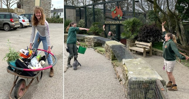 Zookeepers self-isolate in animal park to keep them fed
