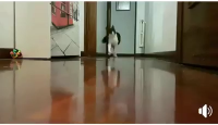Nooooooooooooooooo