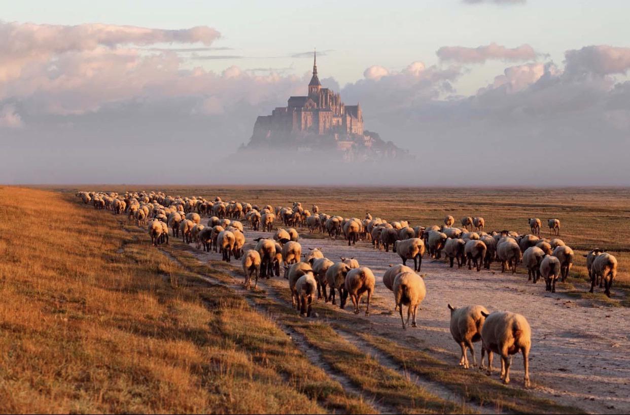 Mont. St. Michel