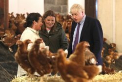 Full list of MPs who voted to lower our food standards during the Covid pandemic