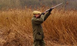 Coronavirus: hunting exempt from 'rule of six' restrictions in England
