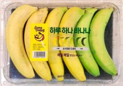 "The ""One-A-Day"" banana pack in Korea with different ripeness, eat them over several days without ..."
