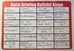 Boris bullshit bingo