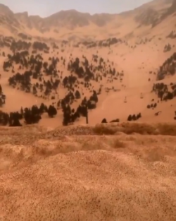 Saharan sand from Africa covering snow in Europe