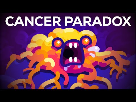 Why Blue Whales Don't Get Cancer – Peto's Paradox – YouTube