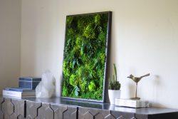 Preserved Moss Art Framed, Real Moss Decor, Living Moss Wall Art Large, Living Plant Wall Art, N ...